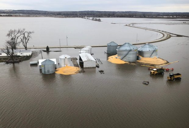 The contents of grain silos which burst from flood damage are shown in Fremont County Iowa, U.S., March 29, 2019. REUTERS/Tom Polansek