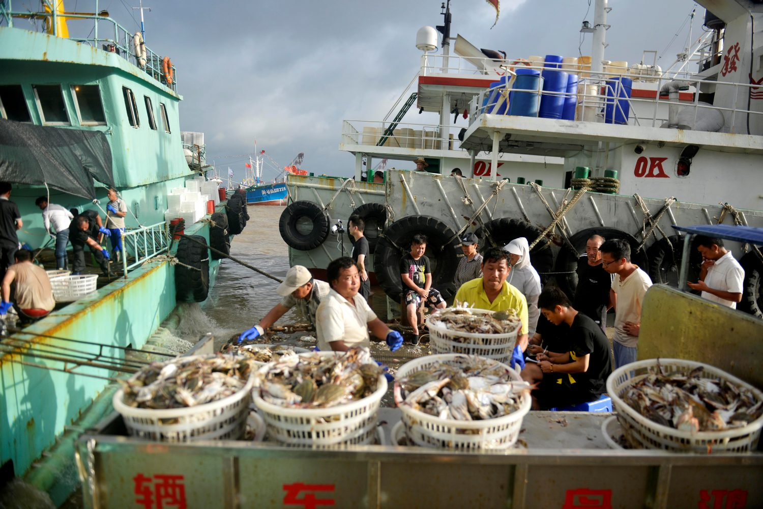 Workers unload seafood from fishing boats before super typhoon Lekima makes landfall in Zhoushan, Zhejiang province, China August 8, 2019. Picture taken August 8, 2019. REUTERS/Stringer