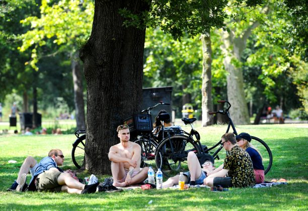 FILE PHOTO: People cool off underneath a tree during a sunny day in the Vondelpark in Amsterdam, the Netherlands, July 25, 2019. REUTERS/Piroschka van de Wouw
