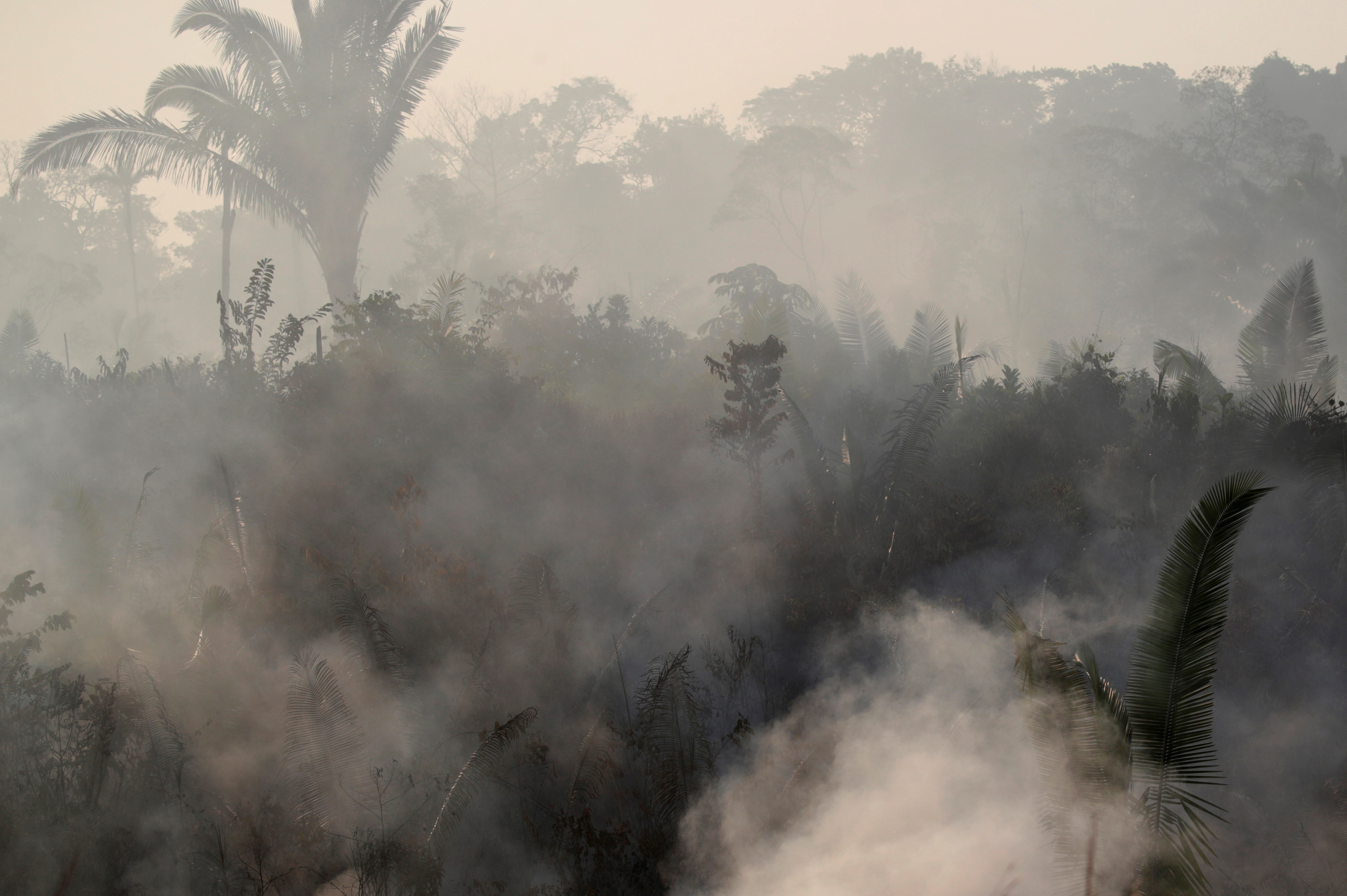 Smoke billows during a fire in an area of the Amazon rainforest near Humaita, Amazonas State, Brazil, Brazil August 14, 2019. REUTERS/Ueslei Marcelino
