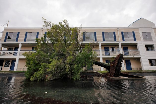 A fallen tree and flood waters sit in a hotel parking lot after Hurricane Dorian swept through, in Wilmington, North Carolina, U.S., September 6, 2019. REUTERS/Jonathan Drake