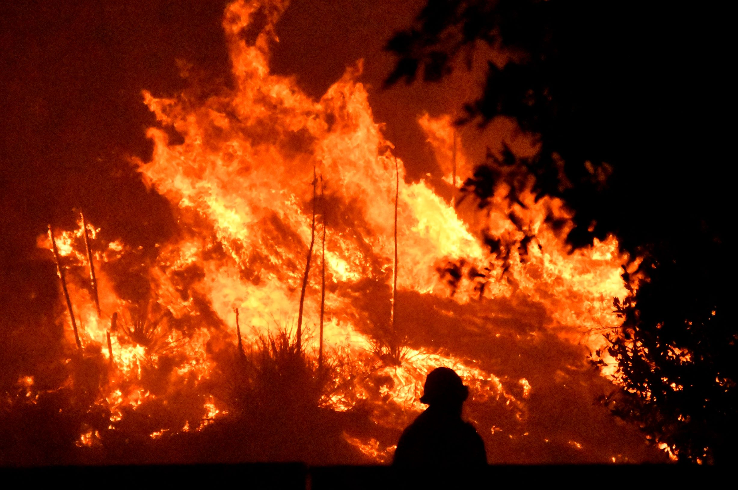 wind-driven los angeles wildfire leaves one dead, forces