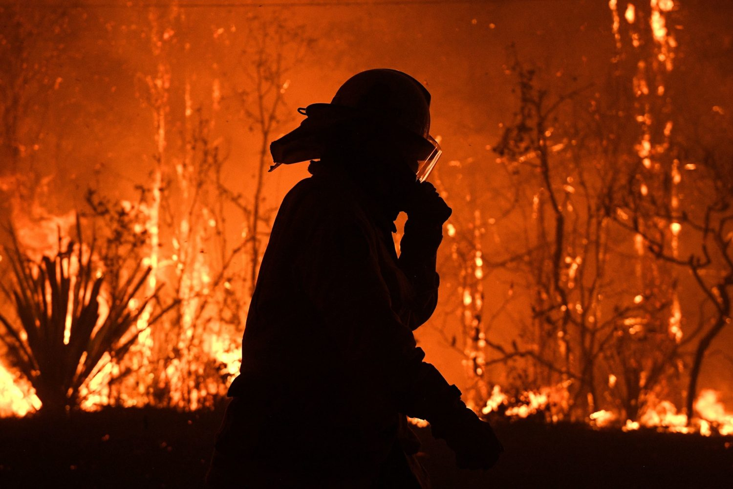 Fears grow about Sydney after Australia fires merge into ...
